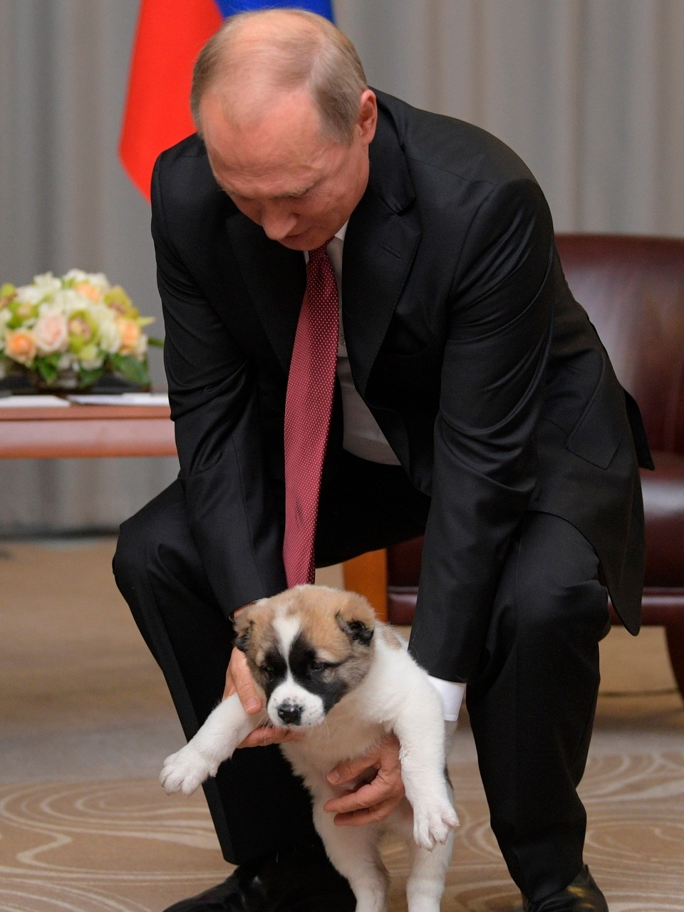 Putin S Puppy Russia S Dog Loving Leader Gets A Furry Gift